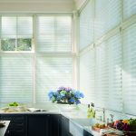 Hunter Douglas Silhouette® Shades for Homes near Meridian, Idaho (ID) with Sheer Fabrics & Vanes